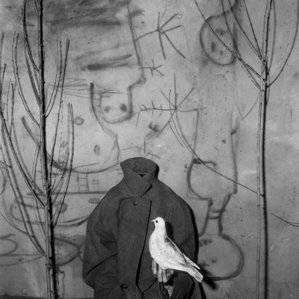 'Headless' by Roger Ballen